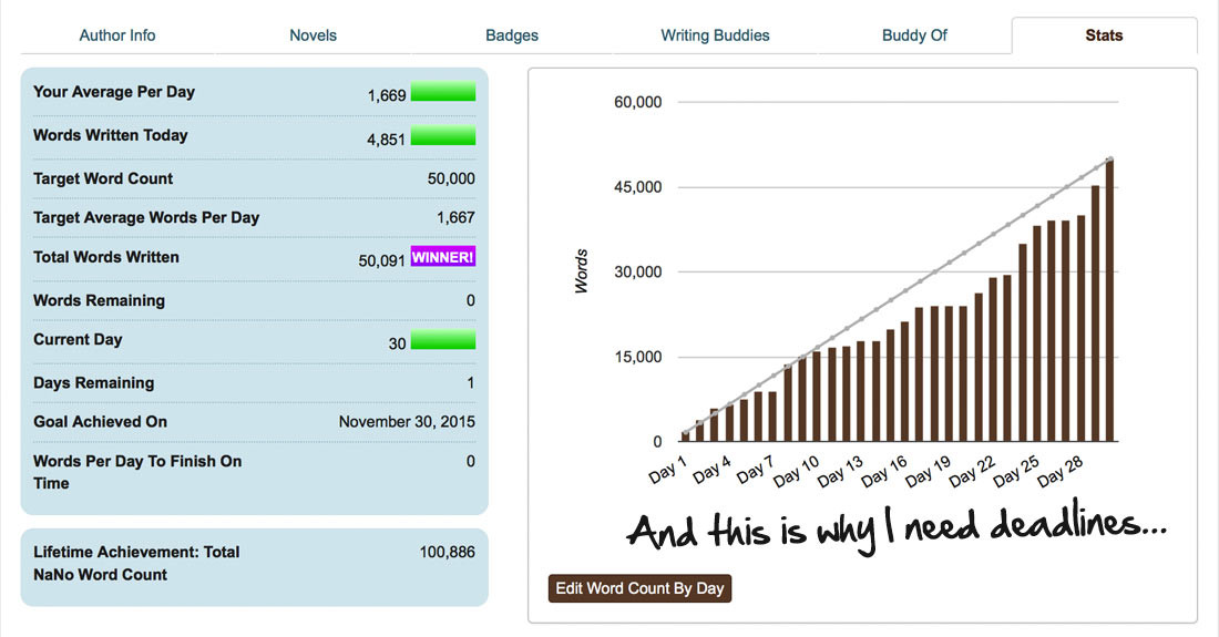 nanowrimo-last-day-push